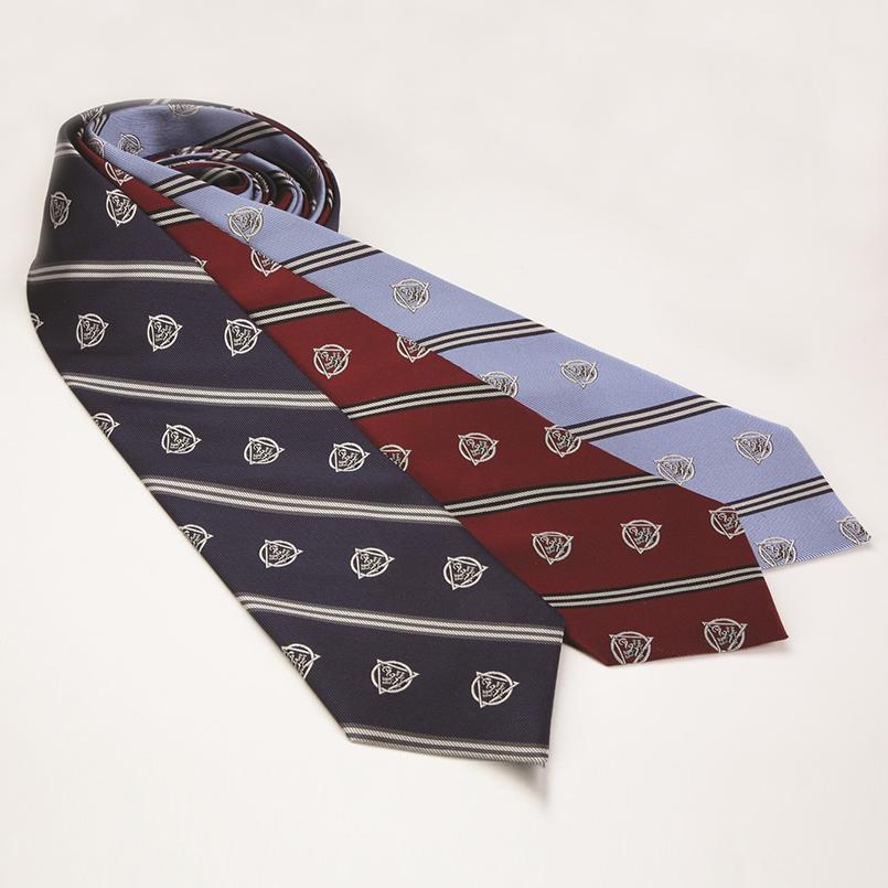 Burgundy Striped Dental Tie